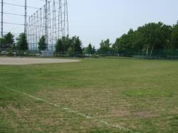 西岡中央公園球場