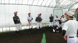 冬季練習に励む札幌南シニアナイン=8日、札幌南シニア室内練習場